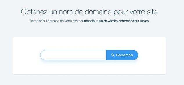 Acheter un nom de domaine sur Wix